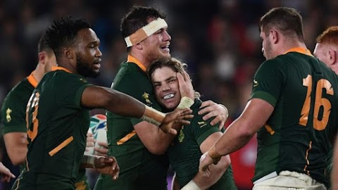 South Africa set up Rugby World Cup final with England