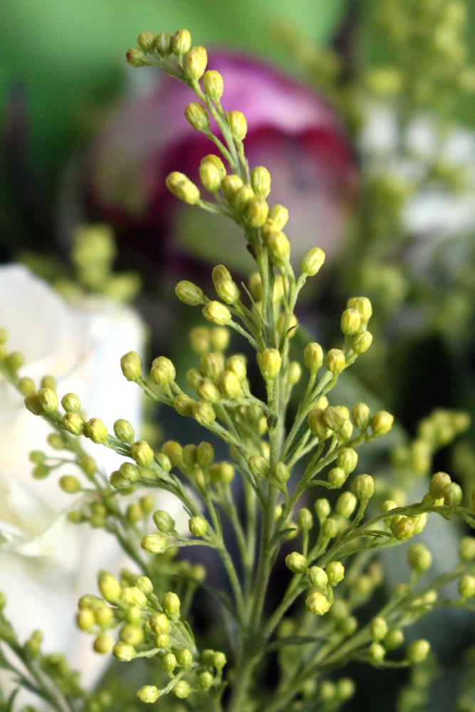 Peony, Rose & Lily Bouquet | Debenhams Flowers | lifestyle blog