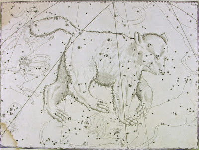 old constellation artwork of Ursa Major