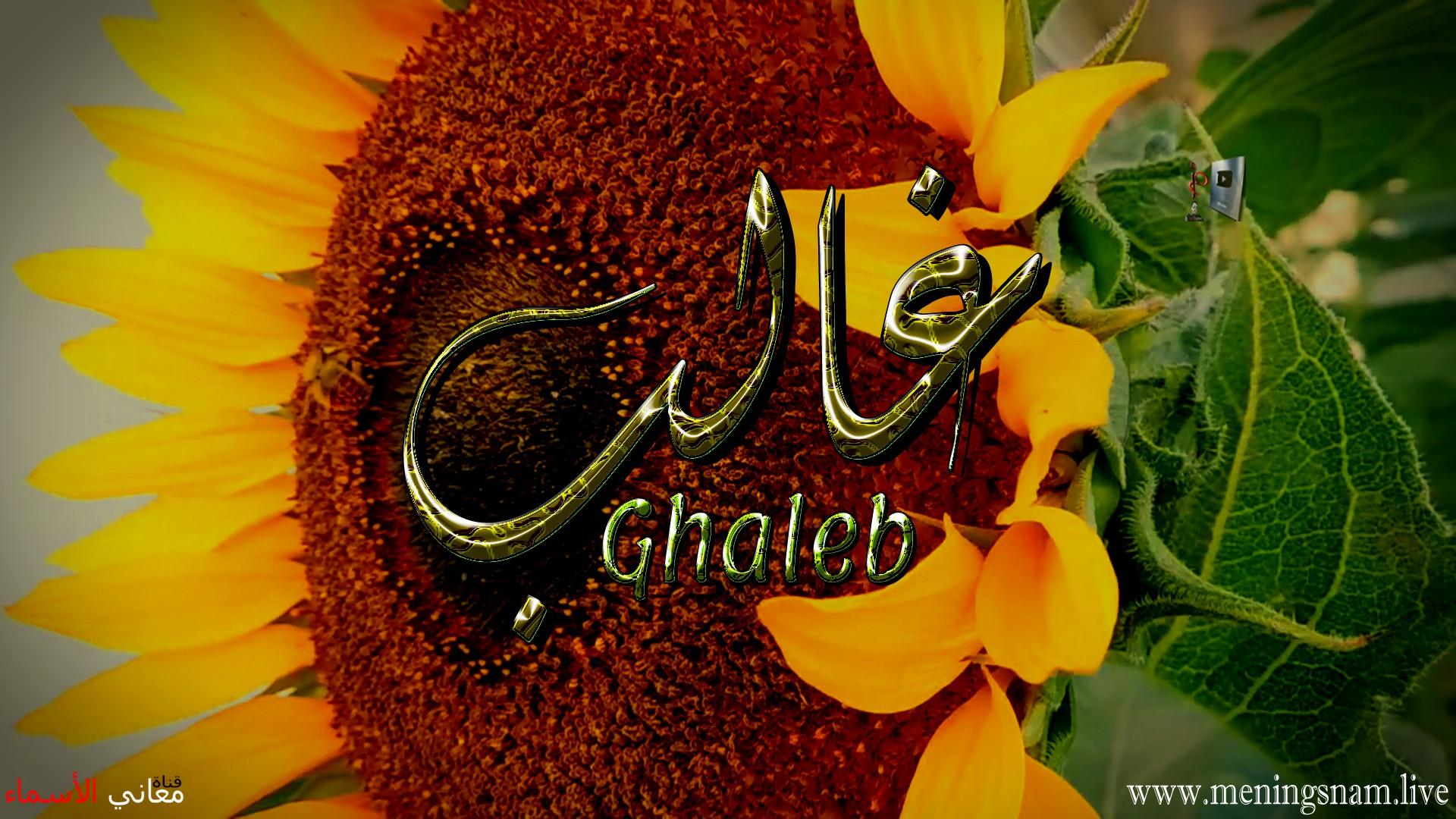 معنى اسم غالب وصفات حامل هذا الاسم ghaleb,