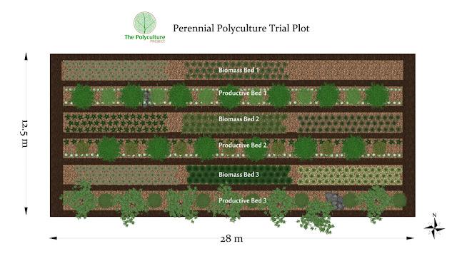 Perennial Polyculture Trial Plot