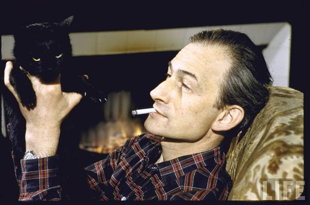 balthus cat - photo #2
