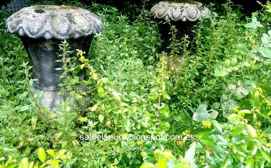 hacienda-gijon-columnas-piedra