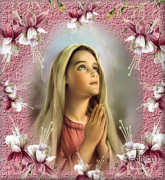 Dulce nombre de María:   Celebración «12 de Septiembre»