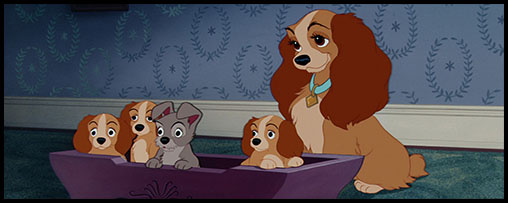 Lady From Lady And The Tramp As A Puppy