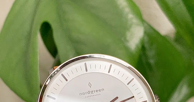 Photo of Plus Size Kitten: Nordgreen Philosopher Watch Review