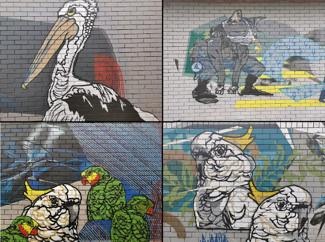 Dickson Street Art by Byrd   Canberra Street Art