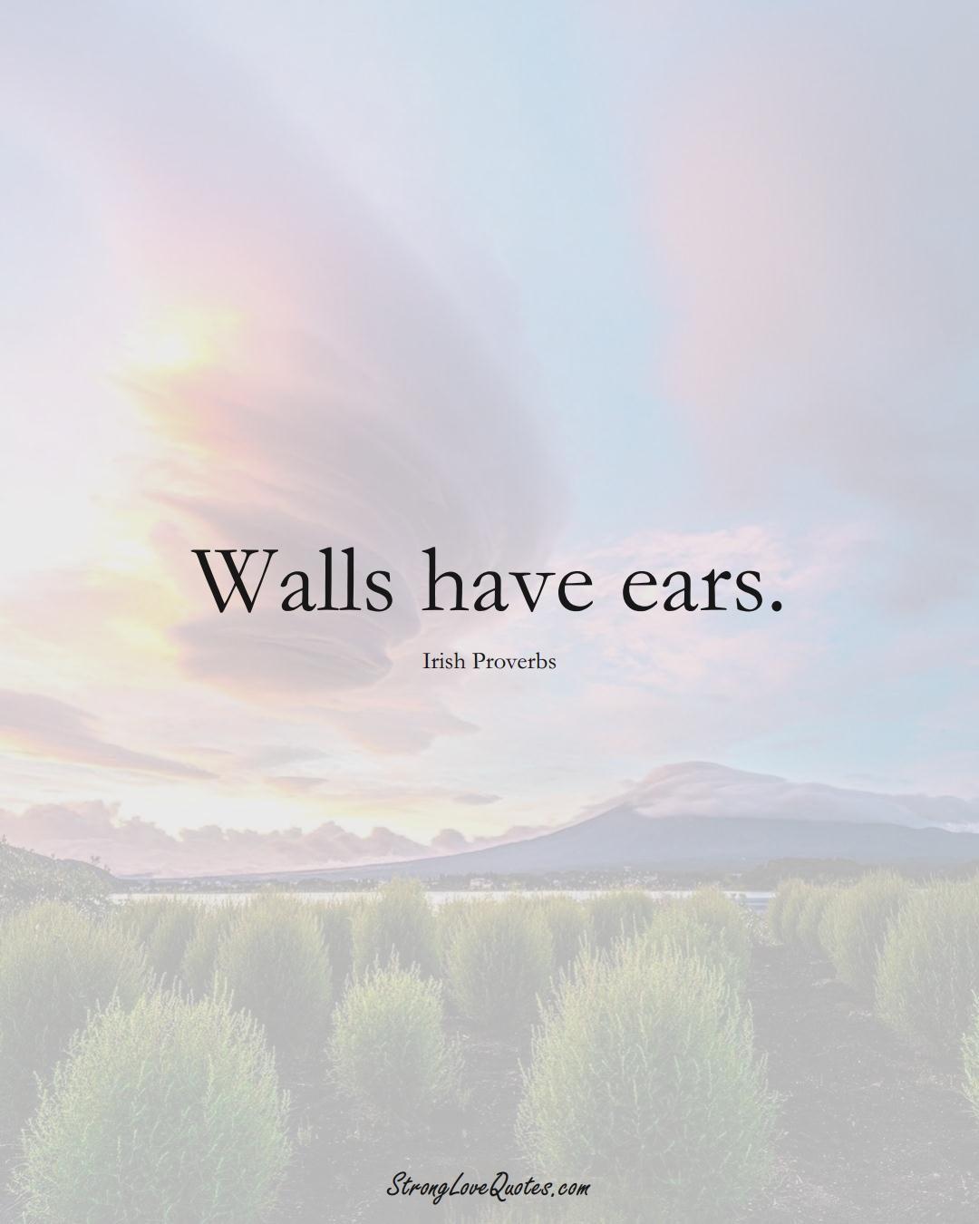 Walls have ears. (Irish Sayings);  #EuropeanSayings