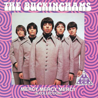 Kind Of A Drag by The Buckinghams (1967)
