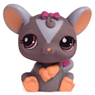 Littlest Pet Shop Small Playset Rat (#1203) Pet