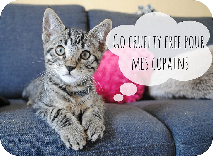 photo article sur les marques cruelty free