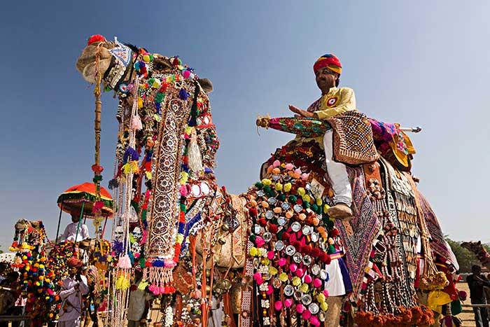 Festival Unta Pushkar