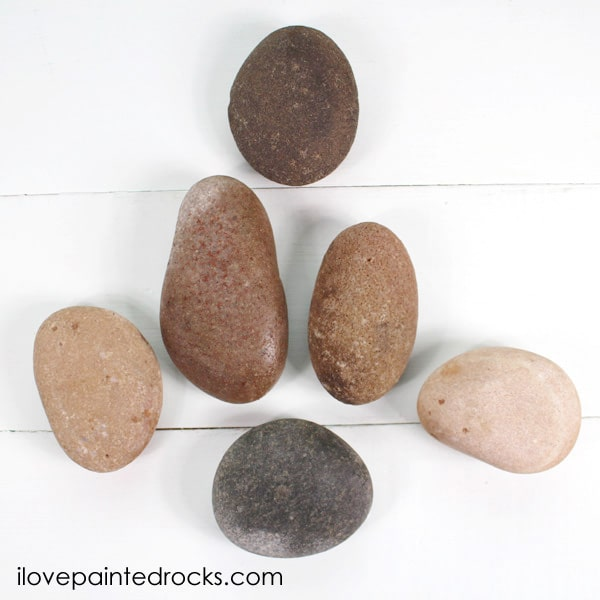 The perfect smooth round rocks for painting a nativity set on.