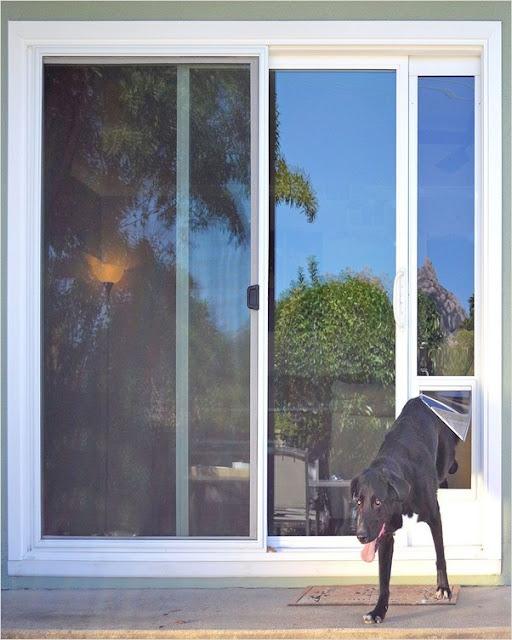 sliding screen door with dog door photos