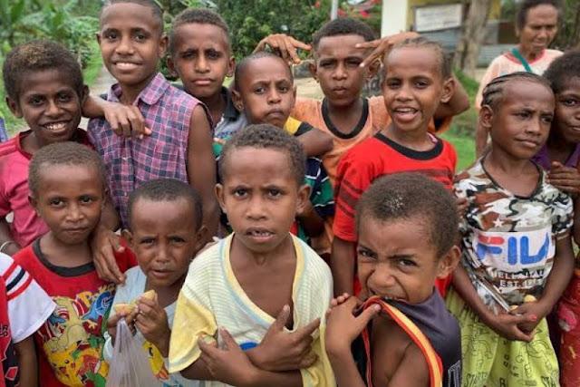 PKS: Papua Harus Dibangun dari Segala Arah