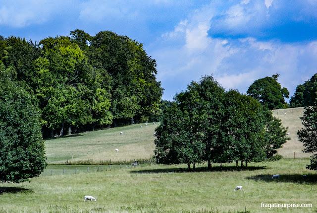 Vila de Chawton, Inglaterra