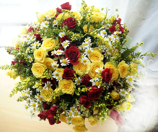 plant-flower-petal-daisy-bouquet-gift-10