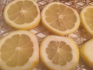 preserving lemons, how to dehydrate and use lemons, dehydrating lemons