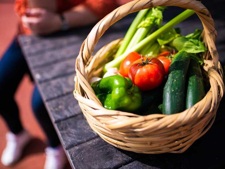 Horta em casa: dicas para criar a sua de maneira fácil e eficiente