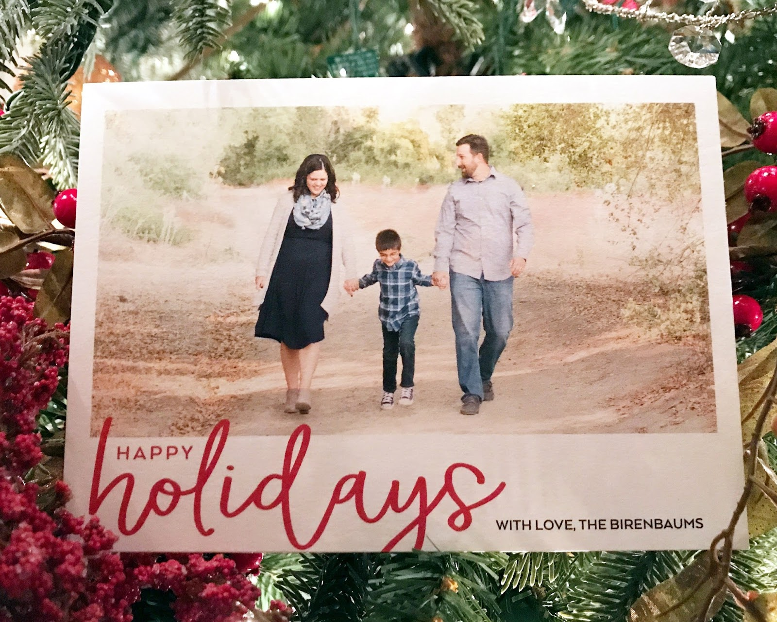 Chasin\' Mason: Holidays Cards with Shutterfly.