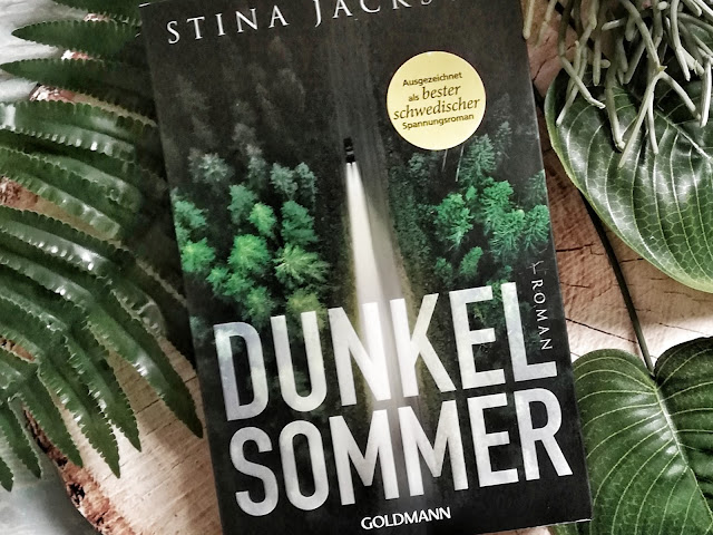 """Spannungsroman """"Dunkelsommer"""" von Stina Jackson"""