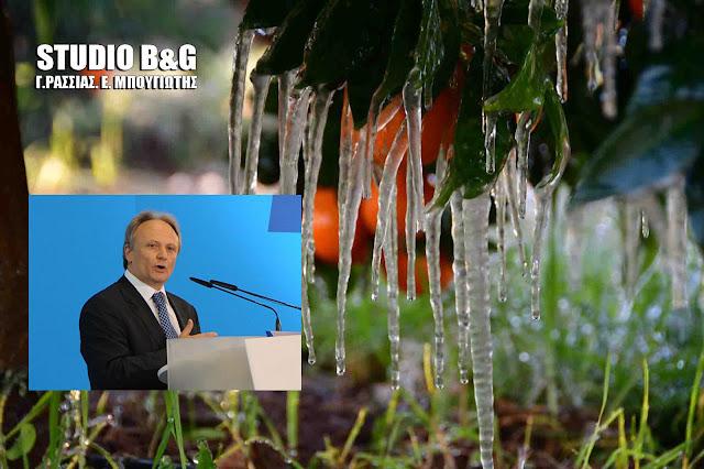 Ανδριανός:  Να ξεκινήσει άμεσα από τον ΕΛΓΑ η διαδικασία αποζημίωσης των παραγωγών από τον παγετό στην Αργολίδα