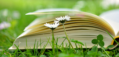 Book lying open in a meadow of daisies