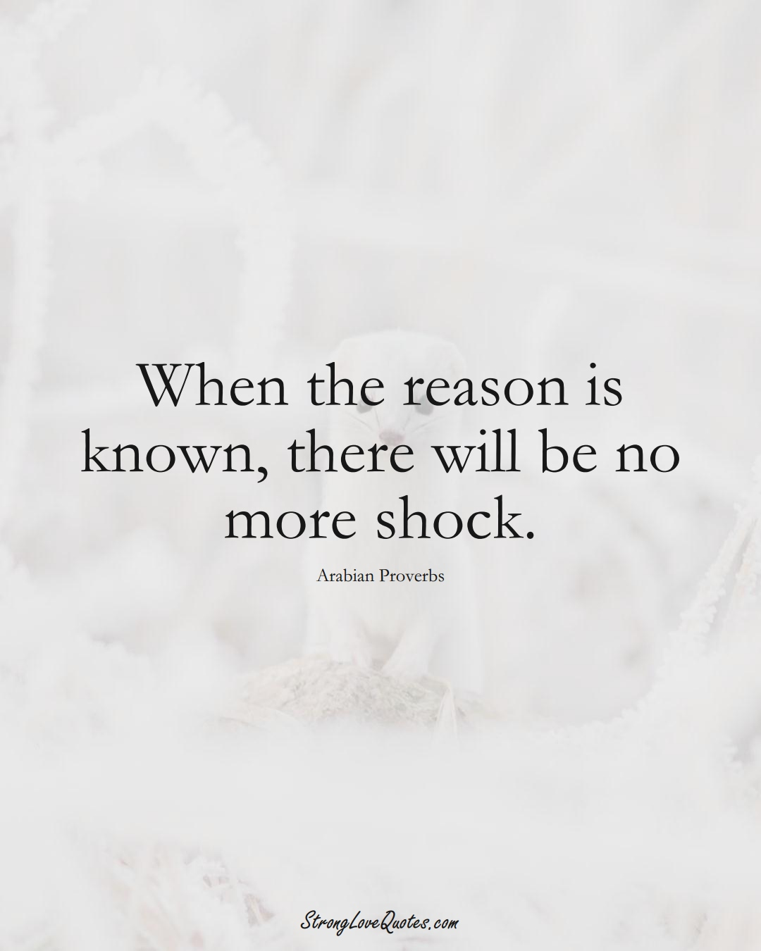 When the reason is known, there will be no more shock. (Arabian Sayings);  #aVarietyofCulturesSayings