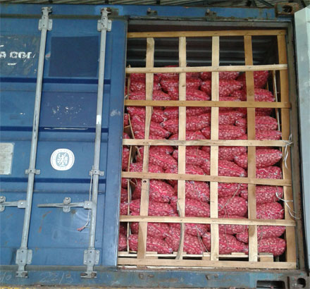 How to export onion from India to any country ~ Export Import India