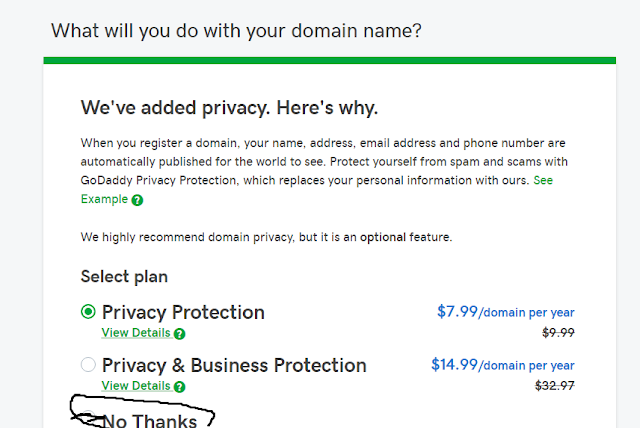 Purchase domain Name With Go Daddy screenshot 1