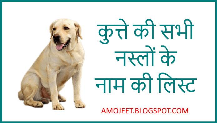 Kutte-ke-naam-ki-list-hindi-me