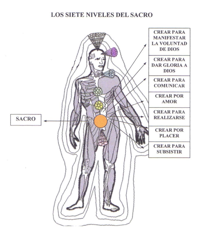 Sistema de Sanación Natural Tinerfe: El Chakra Sacro. La Pasión de ...