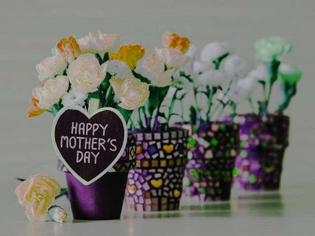 Mothers Day Flowers Wallpapers 2017