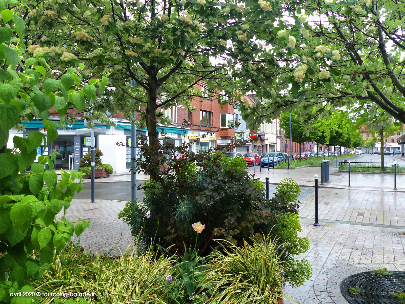Fond de la Place Roussel végétalisée, Tourcoing 2020