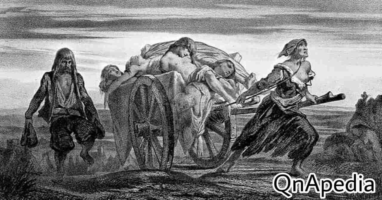 ইতিহাসের প্রথম কোয়ারেন্টাইন