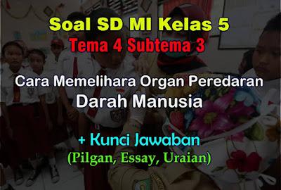 Soal Kelas 5 Tema 4 Subtema 3 (Kesehatan Organ Peredaran Darah) & Jawaban