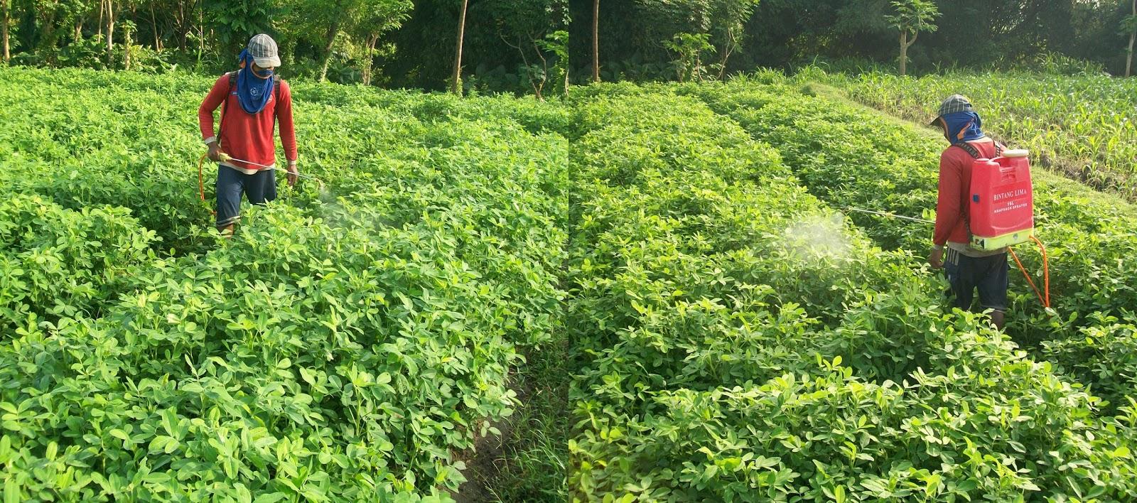 mesin semprot pertanian mesin sprayer elektrik sprayer