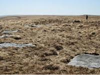 Batu Melingkar 4.000 Tahun Ditemukan Di Dartmoor