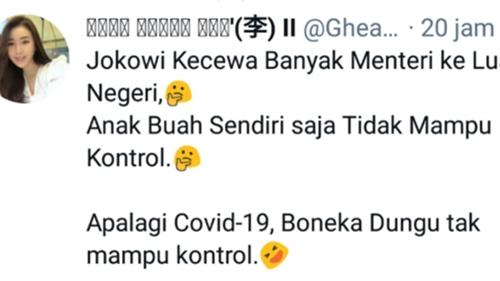 Sebut Jokowi Boneka Dungu, Netizen: Jangankan Covid, Menteri Saja Tak Mampu Dia Kontrol