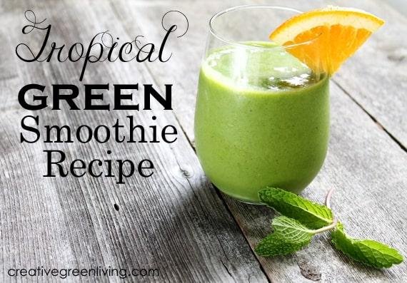 plant based lime coconut fruit smoothie recipe