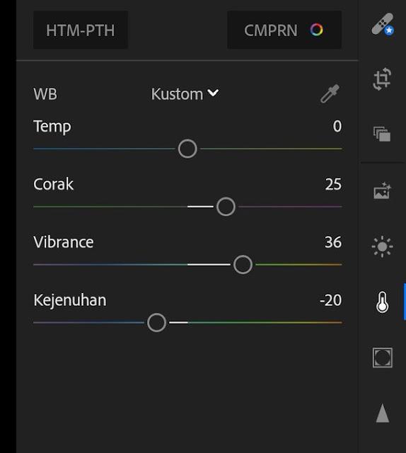 Cara Edit Foto Efek/Filter Disposable Menggunakan Lightroom [Mobile/PC]