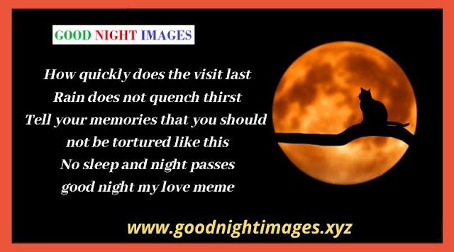 Have a Good Night Meme  Good Night My Love Meme  Sweet Dreams Meme