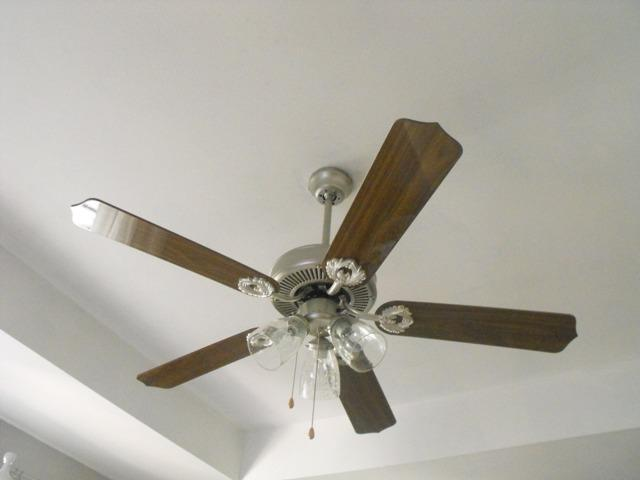 Susie Harris: Painting a ceiling fan?