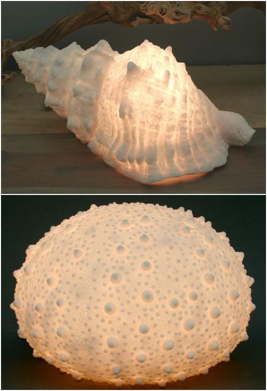 Lit Shell Urchin Lights Lamp
