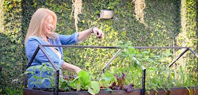 Poder terapeútico jardinería saludmental