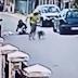 Video/Heroj Podgorice: Medo spasio djevojku od lopova
