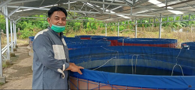 Ekonomi Pesantren Terbantu Berkat Upaya Bupati ASA Berikan Bantuan Ikan Lele