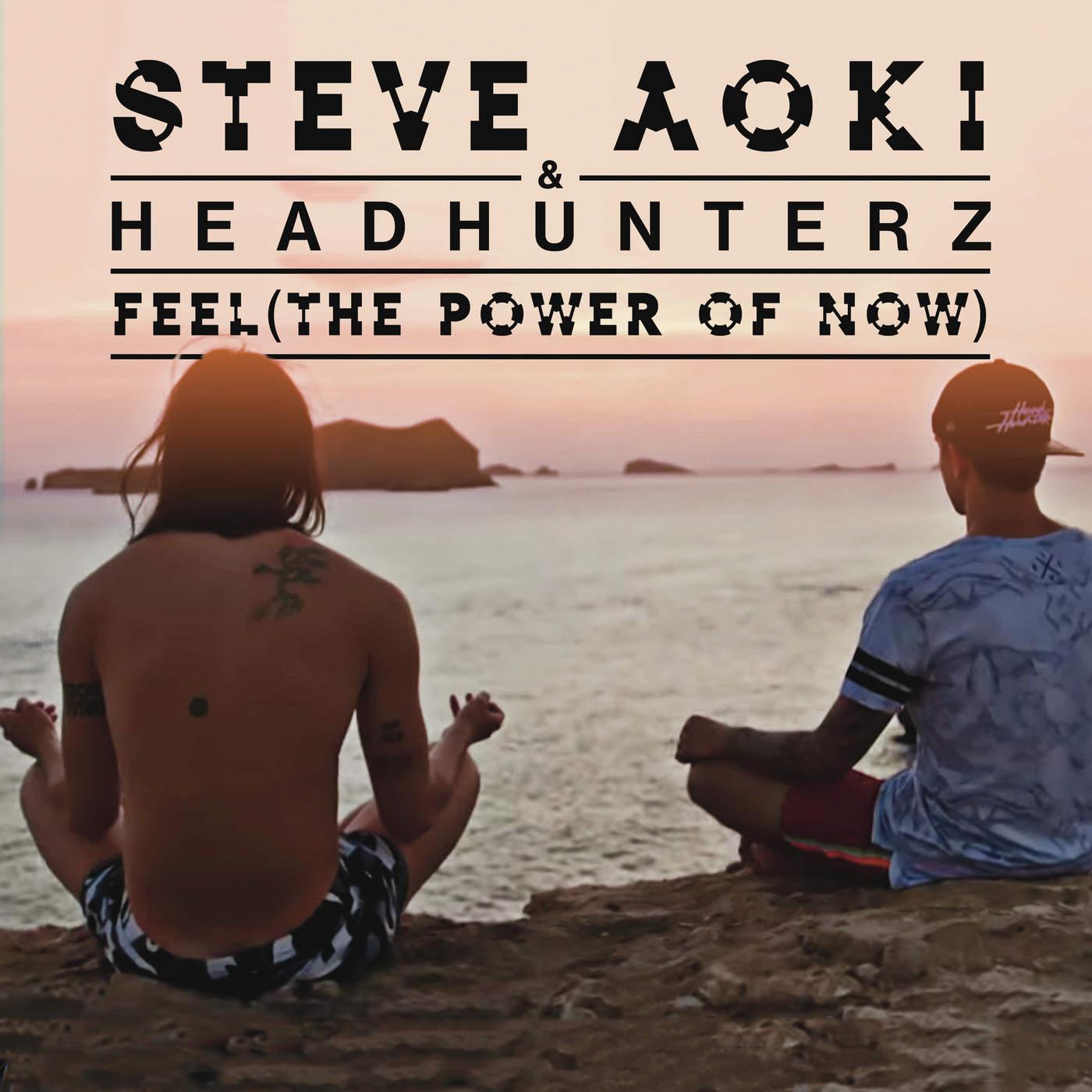 Steve Aoki & Headhunterz - Feel (The Power of Now) - Single Cover