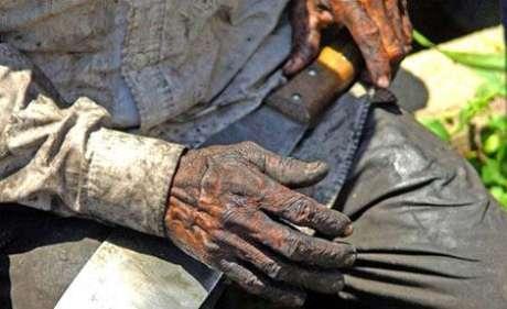 Justiça sergipana condena usina e fazenda por trabalho escravo