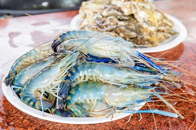 MG 9355 - 熱血採訪│阿布潘水產,專業烤肉、泰國蝦、活魚、帶殼蚵,中秋烤肉百種食材任你挑!